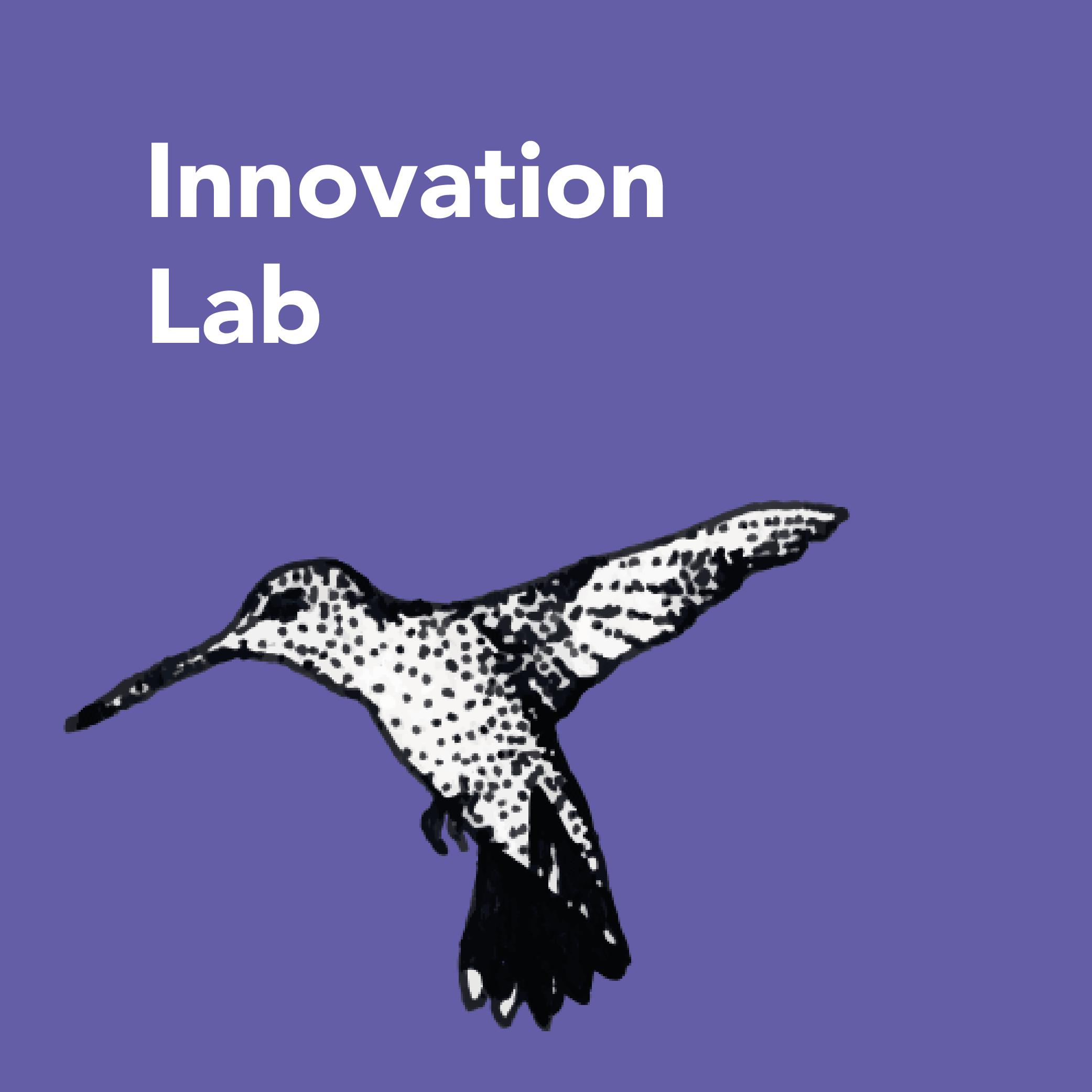 Innovation Lab 500x500