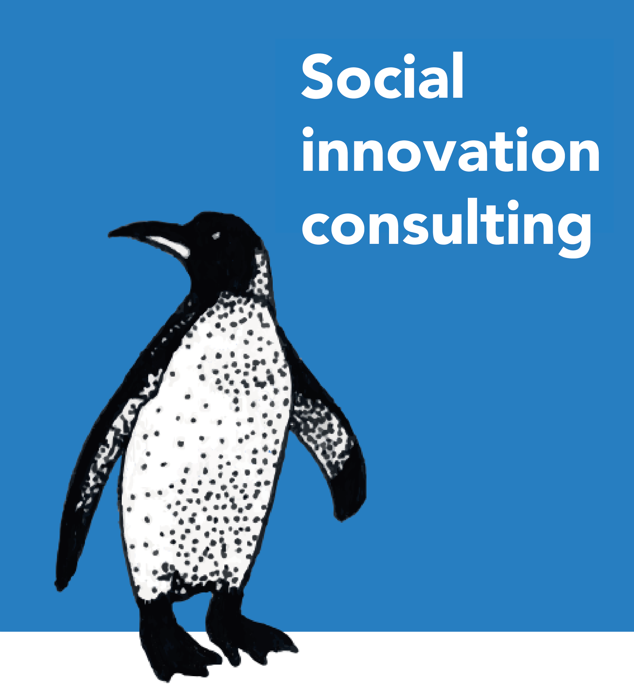 Social innovation consulting