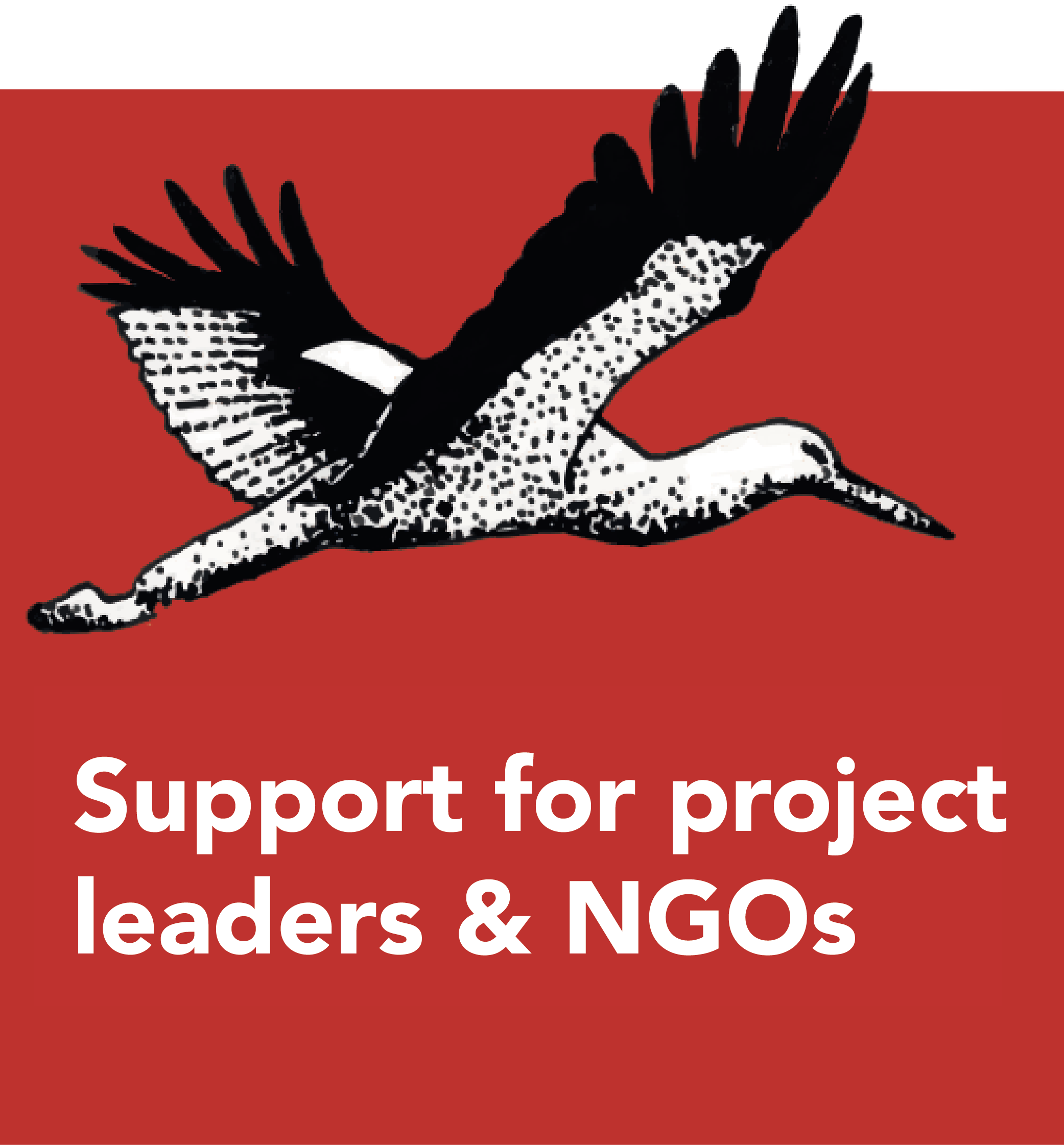 Support for project leaders and NGOs